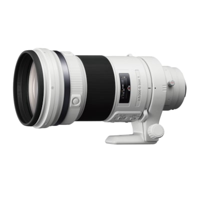 Picture of 300mm F2.8 G SSM II