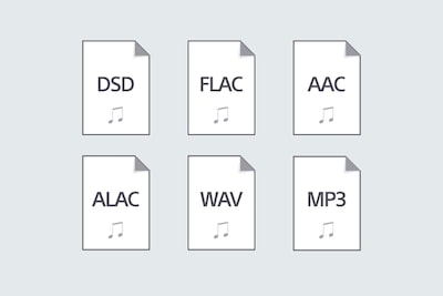 Audio format playback