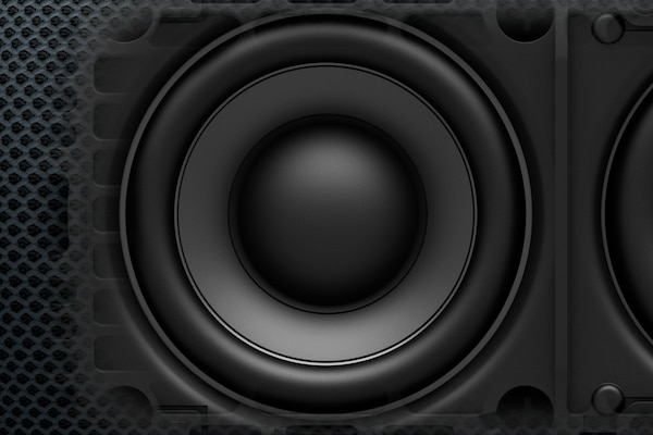 Close-up of Mica Reinforced Cellular speaker cone