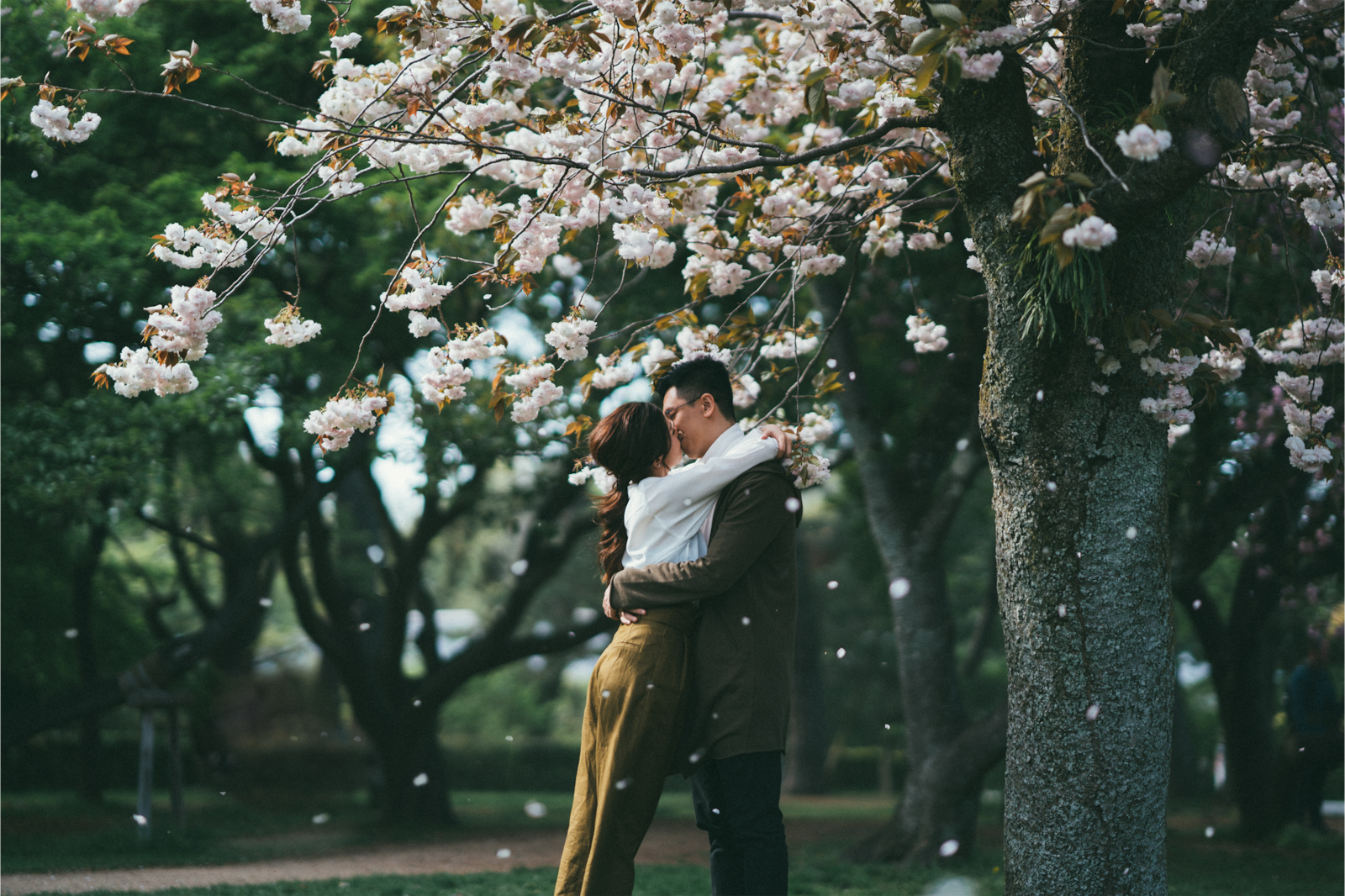 couple kissing under cherry blossom tree alpha 9