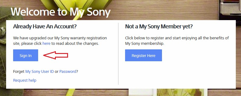 Sign in to My Sony